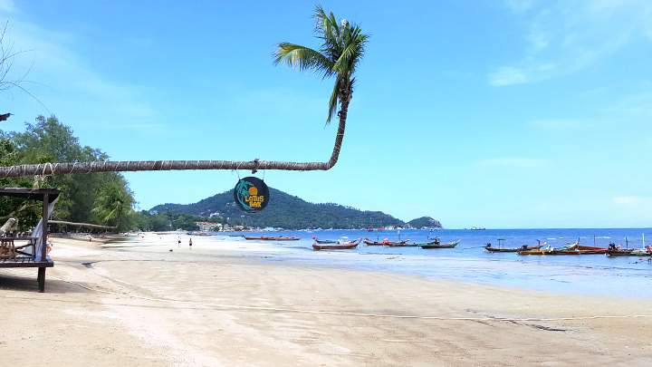 Urlaub Auf Koh Tao Alle Strande Aktivitaten Reisetipps